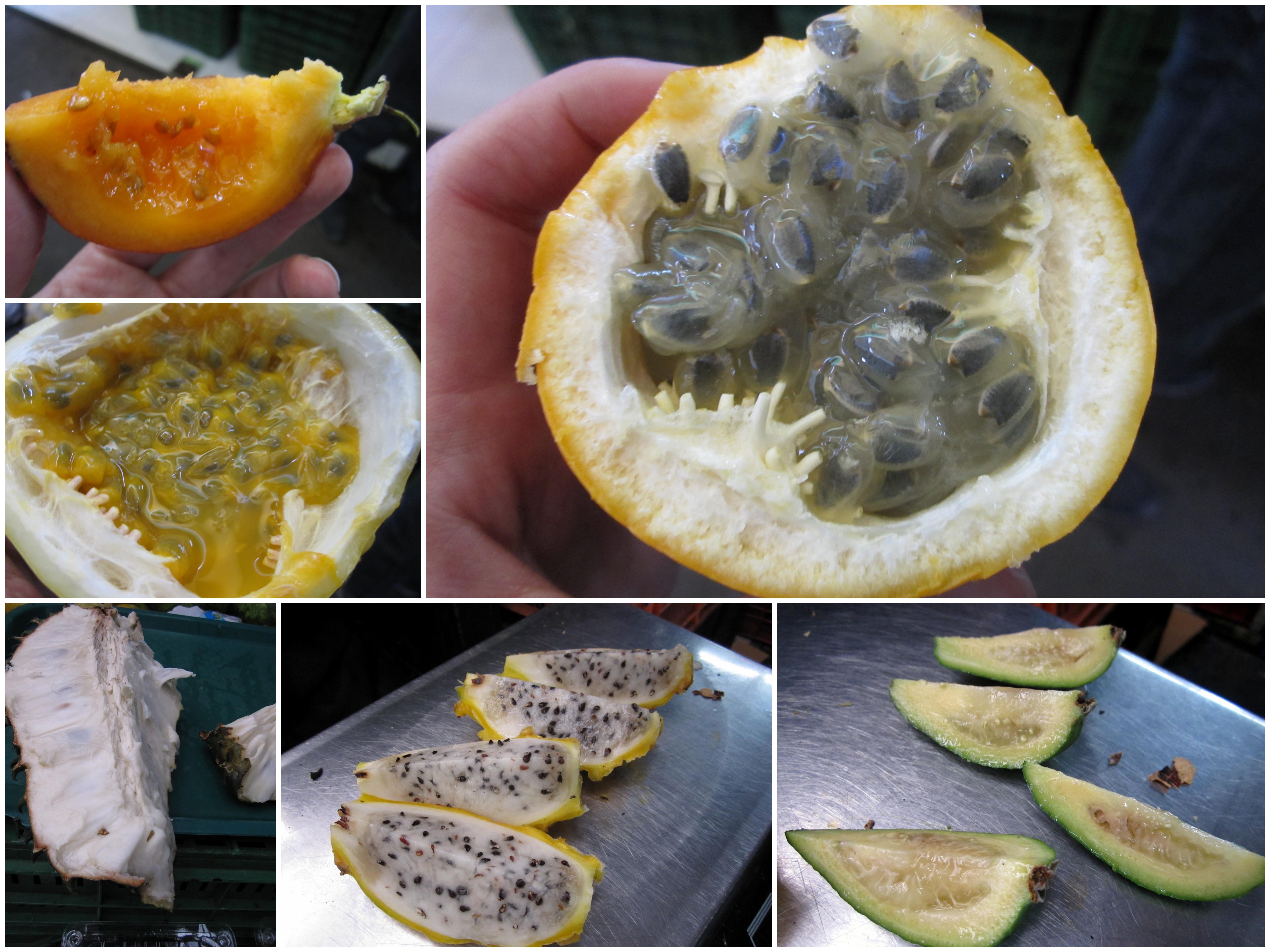 Fruit tasting in Bogota during the bike tour