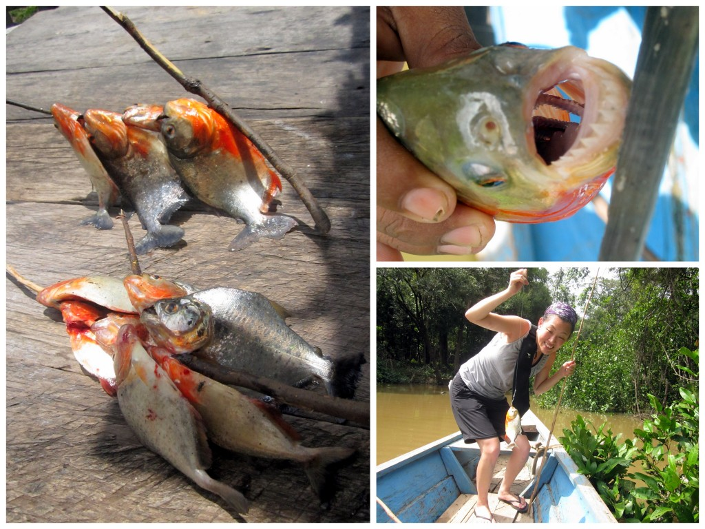 All our hard work on a stick. See the two extra sets of teeth inside the piraña's mouth?? And the biggest red piraña of the day!
